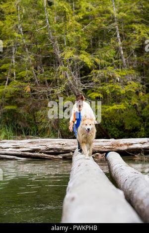 Dog followed by a family walking along a fallen log to cross water. - Stock Photo