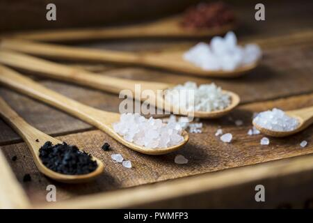 Different types of food coarse Salt in wooden spoons on dark background - Stock Photo