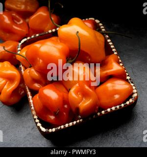 Fresh habanero chilli peppers in a clay dish - Stock Photo