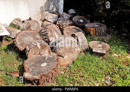 Heap of wood logs ready for winter. Cut tree trunks on grass. Stack of chopped firewood. A pile of woods in the house storage. Raw barked wood logs. - Stock Photo