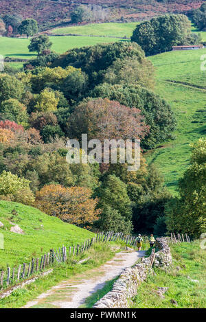 Spain, Navarre, Baztan valley, Amaiur, track (Way of Saint James) - Stock Photo