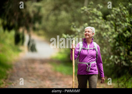 Cheerful mature woman looks up at the trees as she enjoys a peaceful hike in the forest. - Stock Photo