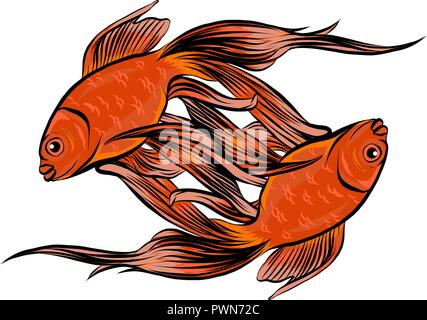 Red Drum, Redfish. Vector illustration with refined details - Stock Photo