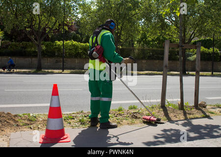 France, Paris, department 75, 7th arrondissement, Orsay bank, local authority employee cutting the grass on the pavement with a brushcutter. - Stock Photo