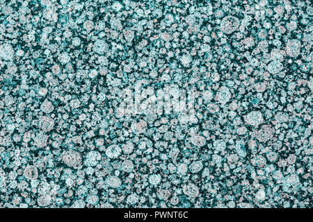 group of gray bubbles in abstract background. - Stock Photo