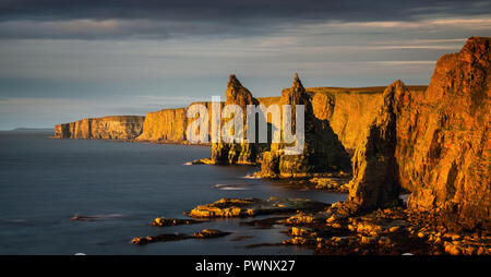 Panorama of Duncanby Head cliffs in sunrise light, northern Scotland - Stock Photo