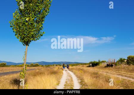 Camino de Santiago (Spain) - Pilgrims along the way of St.James, in the spanish meseta - Stock Photo