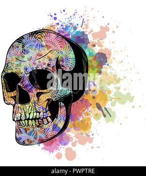 vector Watercolor human skull illustration with stain - Stock Photo