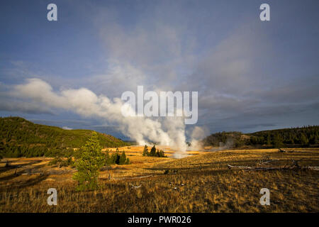 Hot steam rises from one of the many geyser basins in Yellowstone National Park a few miles north of Old Faithful Lodge. - Stock Photo