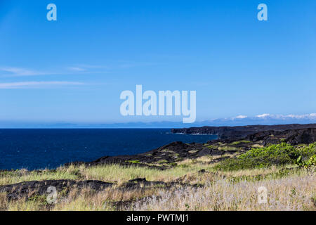 View of Hawaii's Big Island coastline in Volcano National Park. Plants and black volcanic rock in foreground; blue sky & ocean in background. - Stock Photo