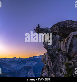 Man at the edge of cliff in Glacier Point - Stock Photo