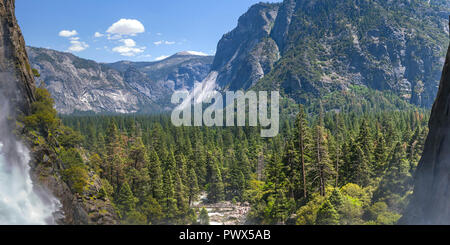 Scenic view of trees and cliff at Yosemite Falls - Stock Photo