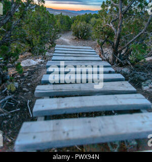 Wooden path on a hiking trail in Eagle Mountain - Stock Photo