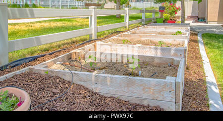 Wooden seedling boxes on a sunny backyard - Stock Photo