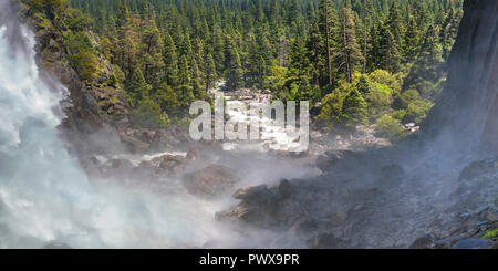 Yosemite Falls running through trees in the valley - Stock Photo