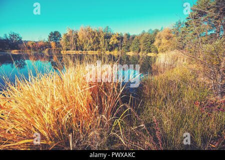 Early morning, sunrise over the lake. Rural landscape in autumn, wild nature