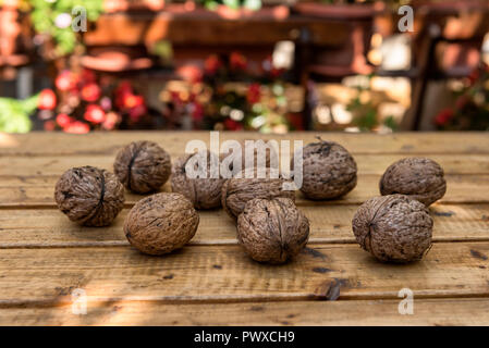 Organic Walnuts from a Small Garden on a Rustic Wooden Table - Stock Photo