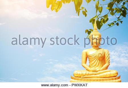 The golden Buddha statues sitting under Bo leaf and bluesky background. - Stock Photo