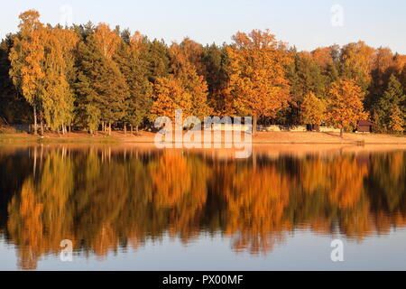Autumn colored trees and their reflection in the lake at sunset in mid-October