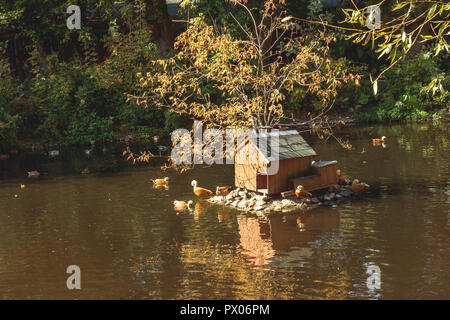 Bird houses in the Moscow zoo in the fall - Stock Photo
