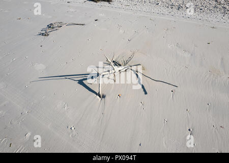 Redington Beach,  Florida, USA, Thursday, 11th October, 2018, Debris, washed onto the Beach, Rough seas from Hurricane Michael, © Peter SPURRIER - Stock Photo