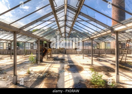 Interior view of a greenhouse on the roof of an abandoned factory in Belgium. - Stock Photo