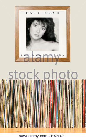 LP Collection and framed Kate Bush 1986 album The Whole Story, England - Stock Photo