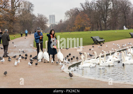 Feeding birds in Kensington Gardens, London - Stock Photo