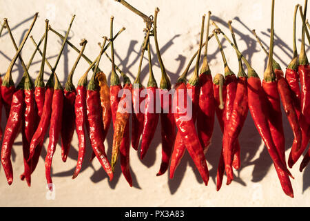 Red peppers hanging to dry in sunshine outside a house in Kahramanmars, Turkey - Stock Photo