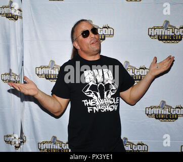 Hamilton, ON, USA. 14th Oct, 2018. 14 October 2018 - Hamilton, Ontario, Canada. WWE Legend wrestler Rob Van Dam at Hamilton Comic Con at the Hamilton Convention Centre by Carmen's. Photo Credit: Brent Perniac/AdMedia Credit: Brent Perniac/AdMedia/ZUMA Wire/Alamy Live News - Stock Photo