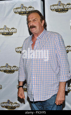 Hamilton, ON, USA. 14th Oct, 2018. 14 October 2018 - Hamilton, Ontario, Canada. WWE Legend wrestler Jake ''The Snake'' Roberts at Hamilton Comic Con at the Hamilton Convention Centre by Carmen's. Photo Credit: Brent Perniac/AdMedia Credit: Brent Perniac/AdMedia/ZUMA Wire/Alamy Live News - Stock Photo