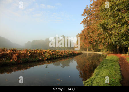 Autumn colours along the Staffordshire and Worcestershire canal near Kinver, UK. - Stock Photo