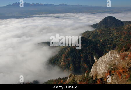 Panoramic view from Three Crowns massif in Pieniny mountains, Poland, valley covered with deep fog, limestone and covered with autumnal trees peaks. - Stock Photo