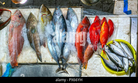 Colorful sea fish is sold at the market. This is a good nutritional protein for the human body - Stock Photo