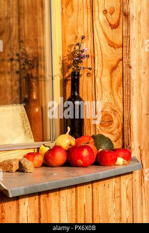 Apples laid on a window sill of a wooden house. Evening on the farm. Autumn time. Fruit harvest - Stock Photo