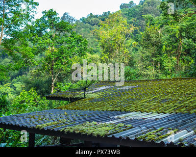 Satellite on the old roof covered by moss in the rainforest jungle near the mountain. - Stock Photo