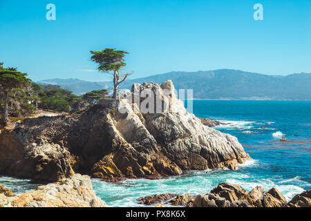 Classic postcard view of famous Lone Cypress, a landmark on a granite hillside off California's scenic 17-mile drive in Pebble Beach gated community o - Stock Photo