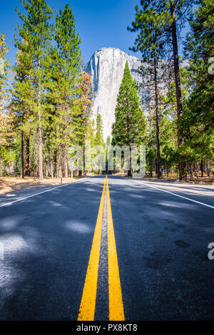 Famous El Capitan mountain peak with road running through Yosemite Valley in beautiful golden morning light at sunrise, Yosemite National Park, USA - Stock Photo