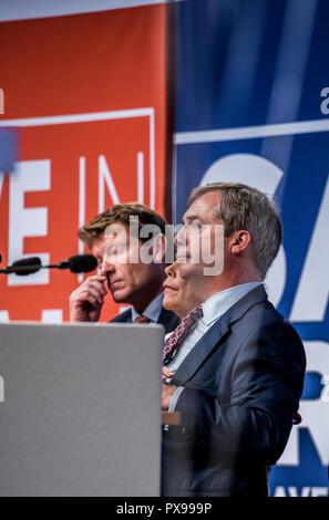Harrogate, UK. 20th Oct, 2018. Leave Means Leave campaigners Nigel Farage MEP and Kate Hoye and founder Richard Tice at a rally in the town's Convention Centre. Credit: ernesto rogata/Alamy Live News - Stock Photo