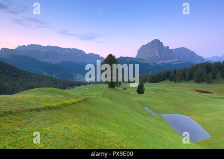 Sunrise above Sassolungo and Sella group with a seasonal pool in the foreground. Daunei, Selva Val Gardena, Gardena Valley, South Tyrol, Dolomites, It - Stock Photo
