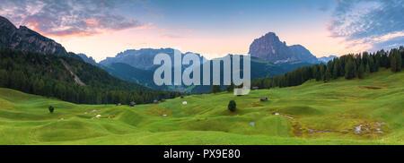Panoramic view of Daunei pasture with Sassolungo e Sella Group in the background. Daunei, Selva Val Gardena, Gardena Valley, South Tyrol, Dolomites. - Stock Photo