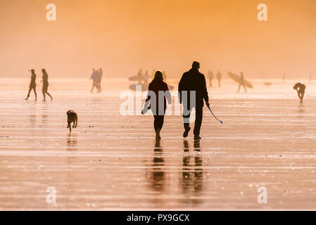 People walking their dog on Fistral Beach in late evening light. - Stock Photo