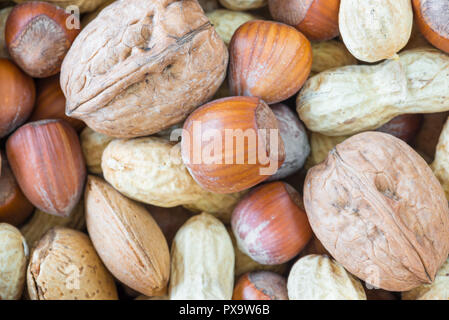 Mixed nuts with shell, close up and top view (hazelnuts, walnuts, peanuts, almonds) - Stock Photo