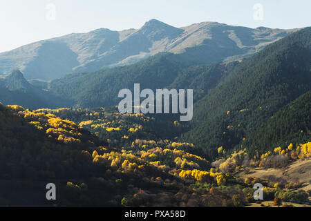 Mountain autumn landscape with colorful forest and high peaks. Epic scene with coniferous and deciduous forest and high peaks. - Stock Photo