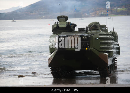 181017-N-VO150-0788 (Oct. 17, 2018)- An assault amphibious vehicle from 2nd Assault Amphibian Battalion, 2nd Marine Division, drives onto the beach in Bogen, Norway, Oct. 17, 2018, and prepares to depart to the marshaling area during Exercise Northern Screen. Northern Screen is a bilateral exercise involving the United States Marine Corps' Marine Rotational Force-Europe (MRF-E) and Norwegian military, and is taking place in vicinity of Setermoen, Norway, from Oct. 24 to Nov. 7, 2018. (U.S. Navy photo by Mass Communication Specialist 2nd Class Kenneth Gardner/Released) - Stock Photo