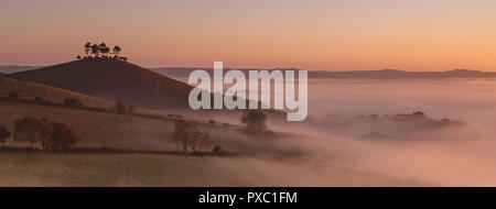 Colmers Hill, Bridport, Dorset, UK. 21st October 2018.  UK Weather:  A misty start to the day at the iconic local landmark of Colmers Hill, Dorset. Credit: Celia McMahon/Alamy Live News - Stock Photo