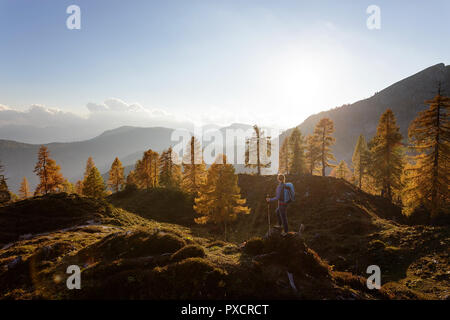 Woman standing on a hill at Krstenica meadow holding hiking sticks at golden light at sunset, Julian alps, Slovenia - Stock Photo