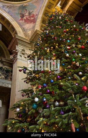 UK, England, Yorkshire, Castle Howard at Christmas, Great Hall, huge decorated Christmas Tree - Stock Photo