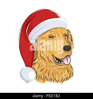 Golden Retriever wears Christmas hat. Holiday dog isolated on white background. - Stock Photo