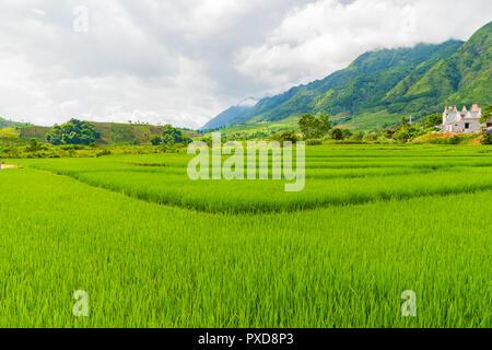 Beautiful paddy field and mountain landscape in SAPA Mu Cang Chai VIETNAM - Stock Photo